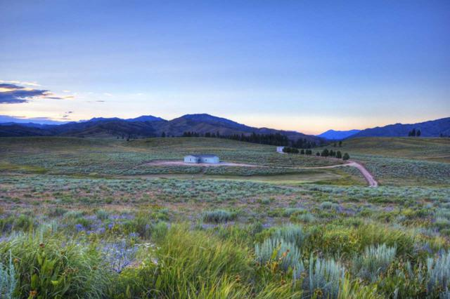 2200 S Aspen Drive, Pine, ID 83647 (MLS #98738759) :: New View Team