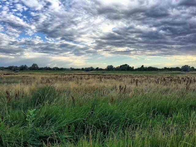 1655 E 1600 S, Gooding, ID 83330 (MLS #98740100) :: Boise River Realty