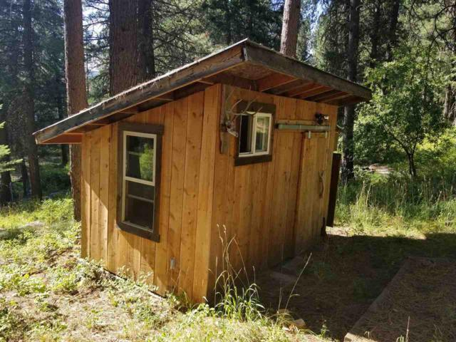 426 Lower Ranch Drive, New Meadows, ID 83564 (MLS #98740128) :: New View Team