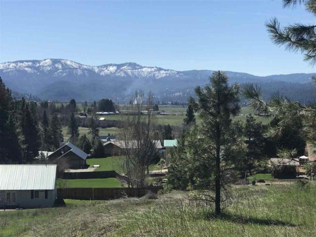 Lot 41 Packer John Drive, Garden Valley, ID 83622 (MLS #98740222) :: New View Team
