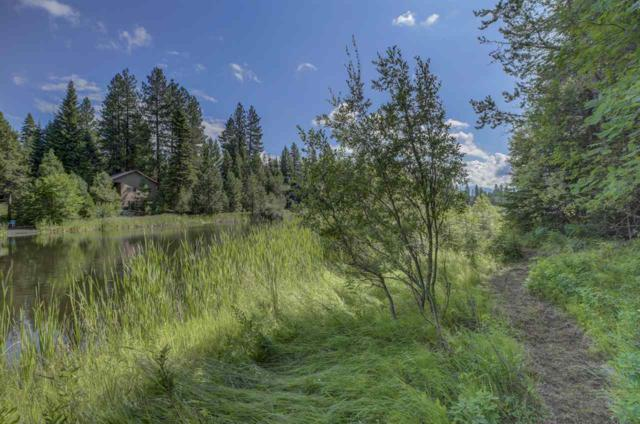 219 Ernesto Drive, Mccall, ID 83638 (MLS #98740651) :: New View Team