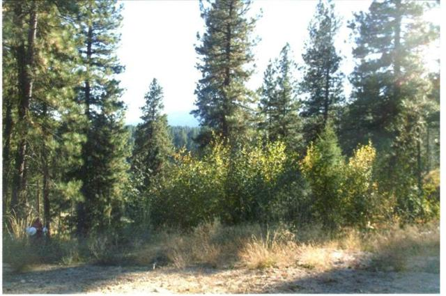 Lot 43 Killdeer Ct., Garden Valley, ID 83622 (MLS #98740832) :: New View Team