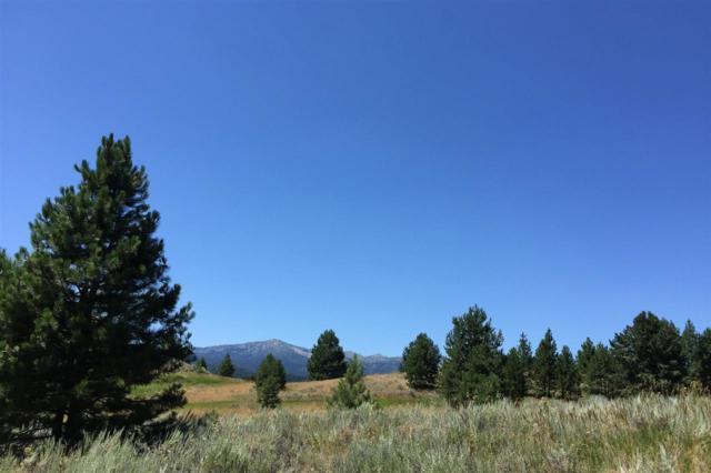 TBD Emma Loop, Cascade, ID 83611 (MLS #98740937) :: New View Team