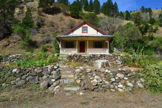 120 Helm Lane, Pollock, ID 83547 (MLS #98740998) :: Boise River Realty