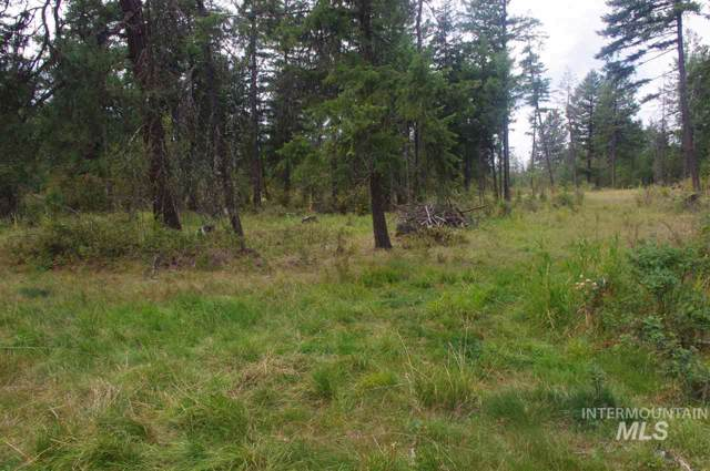 501 Rukavina Rd., Weippe, ID 83553 (MLS #98743390) :: New View Team