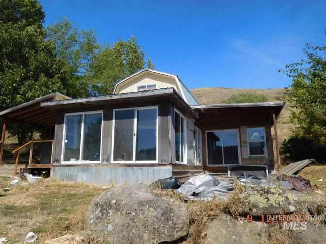 36171 River Road, Lenore, ID 83541 (MLS #98744818) :: Silvercreek Realty Group