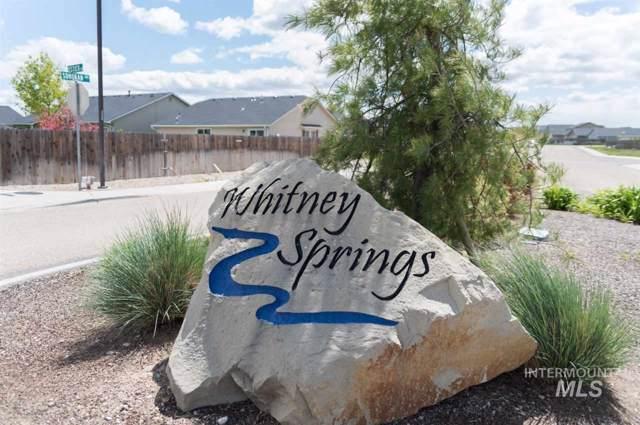 17588 Aqua Springs Ave., Nampa, ID 83687 (MLS #98744987) :: New View Team