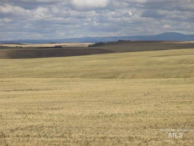 3600 E 700 N Approximately, Ashton, ID 83420 (MLS #98745556) :: Idahome and Land