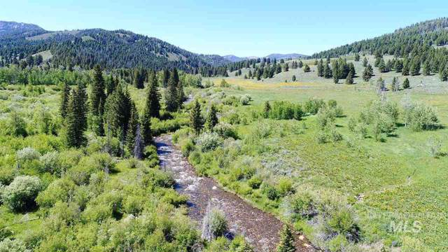 Sawmill Creek Road, Mackay, ID 83251 (MLS #98745620) :: New View Team