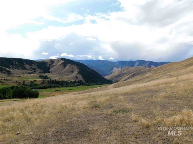 Buckhorn Lane, North Fork, ID 83466 (MLS #98746406) :: Juniper Realty Group