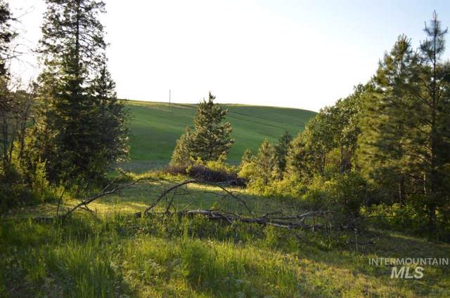 000 Paradise Ridge Rd, Moscow, ID 83843 (MLS #98747973) :: Jon Gosche Real Estate, LLC