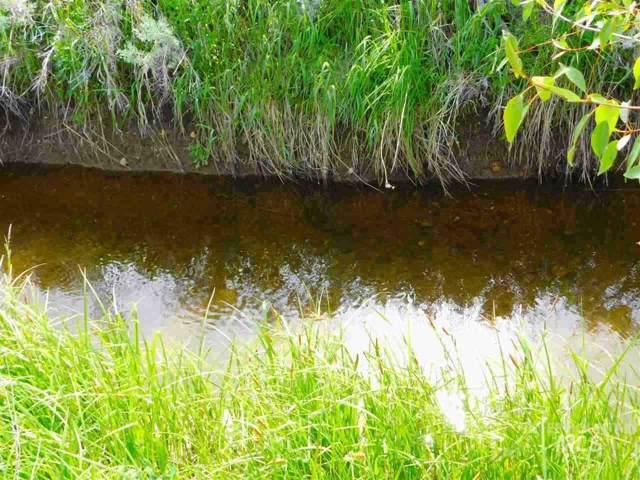 13800 Raptor Loop, Mccall, ID 83638 (MLS #98748916) :: Idahome and Land