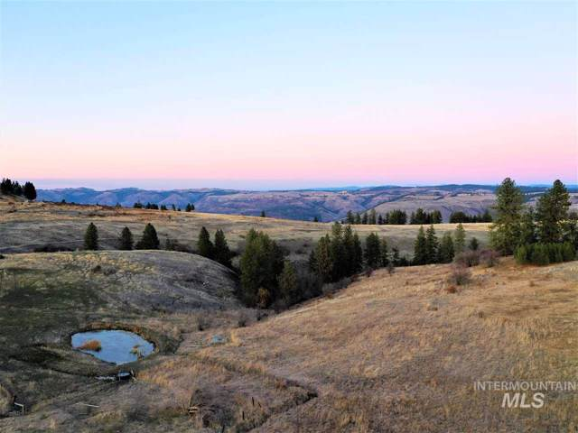 NKA Whitetail Rd, Kamiah, ID 83536 (MLS #98749104) :: Boise River Realty