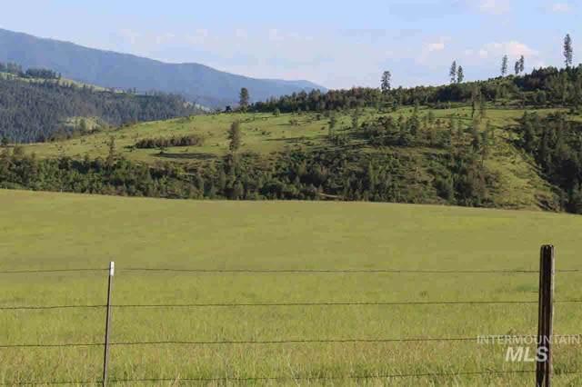 TBD Lot 3 Old Lamb Grade, Stites, ID 83552 (MLS #98749545) :: New View Team