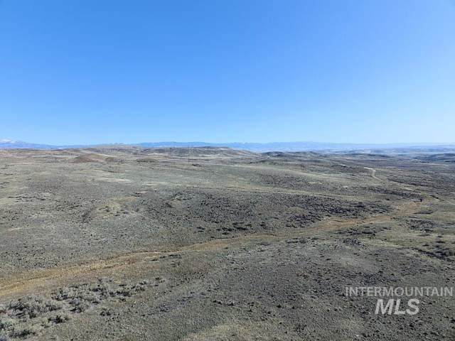 TBD Goodrich Road, Cambridge, ID 83610 (MLS #98749808) :: Jeremy Orton Real Estate Group
