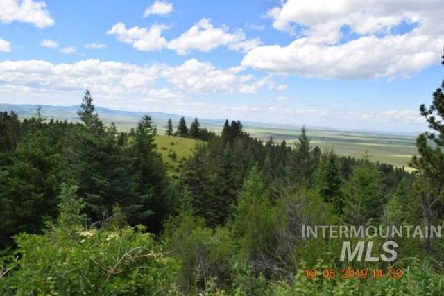 10 AC Ne Old White Bird Hill Road, Grangeville, ID 83530 (MLS #98750468) :: Idahome and Land
