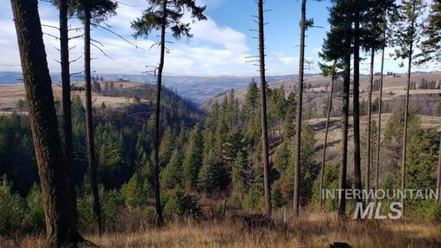 NKA Beaverslide Rd, Kamiah, ID 83536 (MLS #98750599) :: Idaho Real Estate Pros