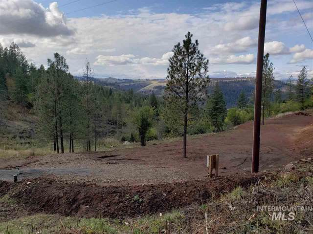 TBD Harpster Drive, Harpster, ID 83552 (MLS #98750731) :: Juniper Realty Group