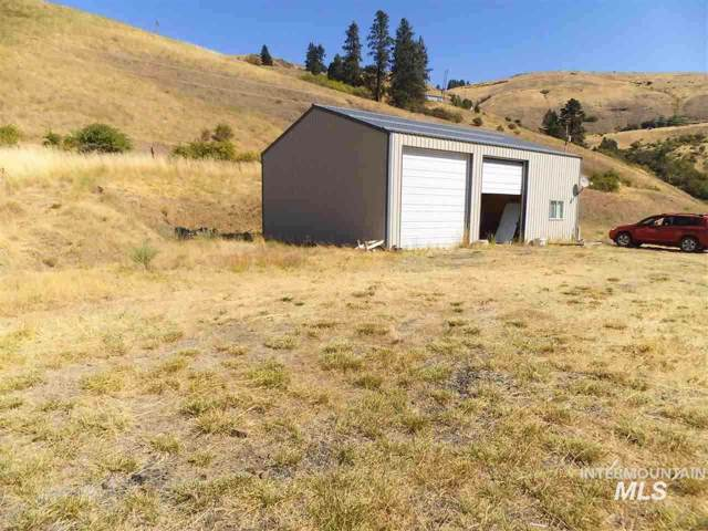20063 Rye Grass Lane, Lenore, ID 83541 (MLS #98751147) :: Jeremy Orton Real Estate Group