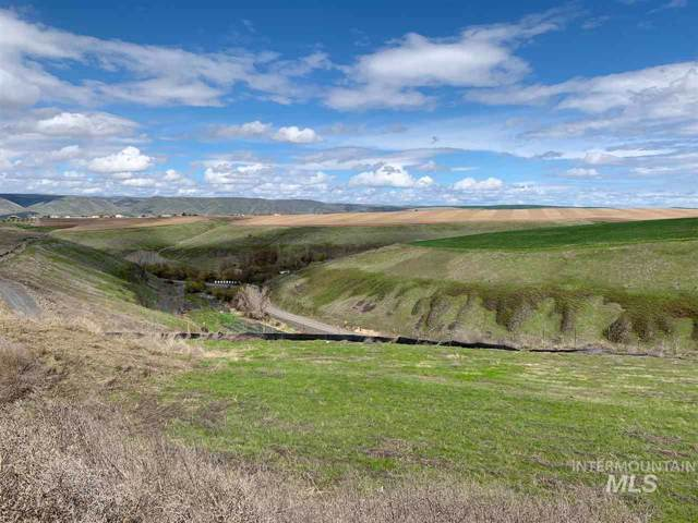 3211 Hidden Valley Loop, Lewiston, ID 83501 (MLS #98751993) :: Haith Real Estate Team