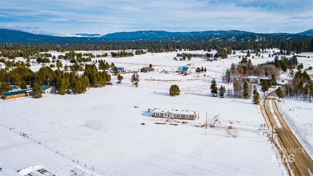 60 Goslin Loop, Cascade, ID 83611 (MLS #98752443) :: Team One Group Real Estate