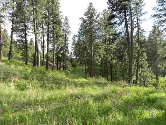TBD Highway 95, Viola, ID 83872 (MLS #98754765) :: Story Real Estate
