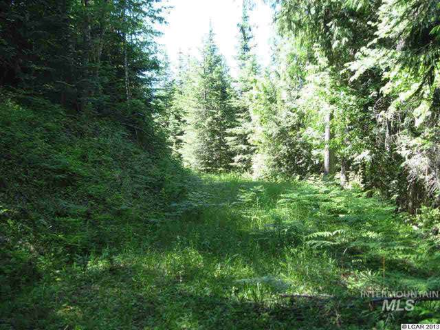 000 Resort Road, Outside City Limits, ID 83539 (MLS #98756167) :: Boise River Realty