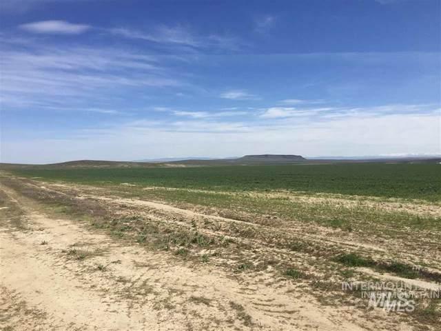 TBD Murphy Flat Rd, Murphy, ID 83650 (MLS #98756341) :: Boise River Realty