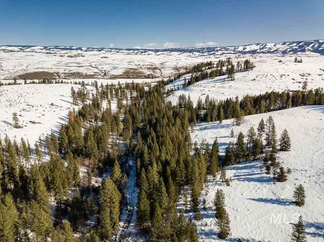TBD Pole Creek Rd, Council, ID 83612 (MLS #98757946) :: Boise River Realty