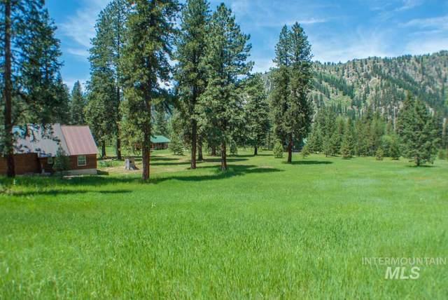 Lot 9 Alder Drive, Lowman, ID 83637 (MLS #98758075) :: Jon Gosche Real Estate, LLC