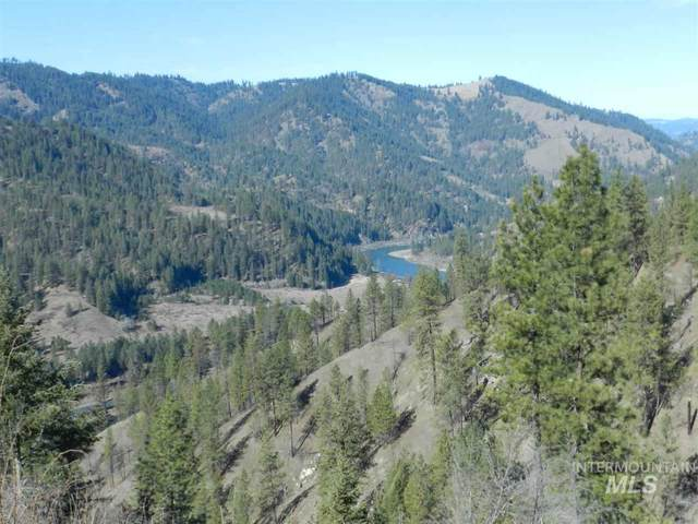 TBD Carrot Ridge Rd #2, Greer, ID 83544 (MLS #98758352) :: Jon Gosche Real Estate, LLC