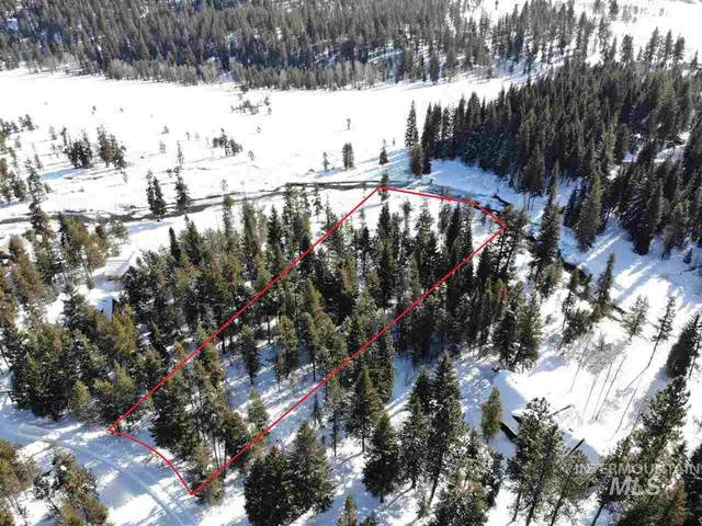 14224 Adams Cir, Mccall, ID 83638 (MLS #98758523) :: Navigate Real Estate