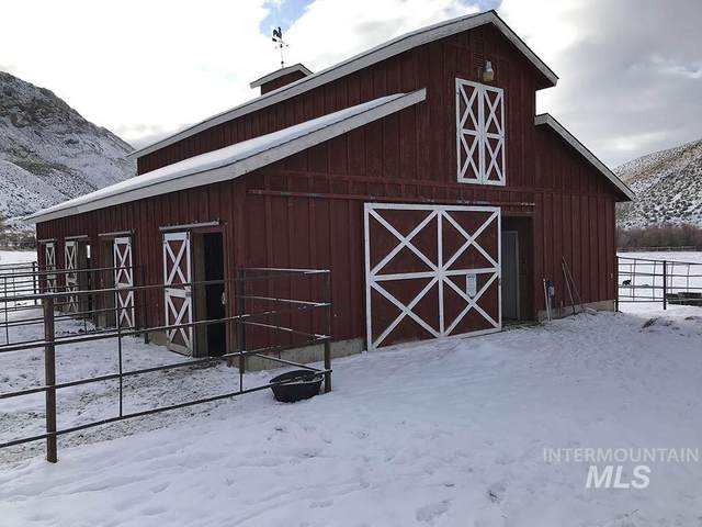 7000 East Fork Rd, Clayton, ID 83227 (MLS #98758982) :: Boise Valley Real Estate
