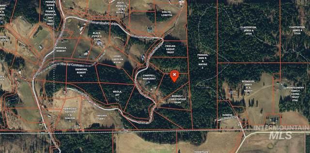 000 Shenandoah Drive, Kamiah, ID 83536 (MLS #98760983) :: Juniper Realty Group
