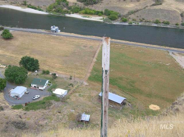 17082 Snake River Rd, Asotin, WA 99402 (MLS #98762012) :: Team One Group Real Estate