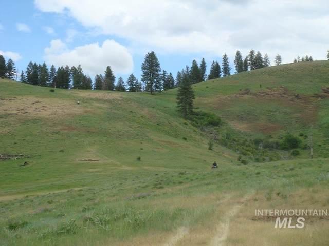 TBD Bentz Ridge, Grangeville, ID 83530 (MLS #98762286) :: Boise Home Pros
