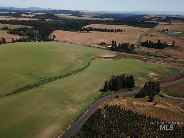 000 Hwy 8 & White Pine Flats, Troy, ID 83871 (MLS #98762693) :: Bafundi Real Estate