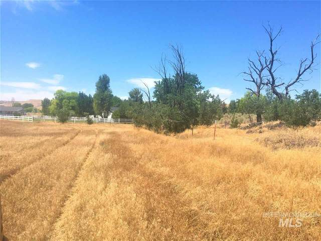 TBD Hagerman Ave.  (Sand Creek Subd.  Lot 1 Block 1), Hagerman, ID 83332 (MLS #98763948) :: Boise River Realty