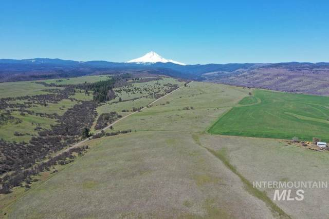 TBD 3 Mile County Rd, The Dalles, OR 97058 (MLS #98764638) :: Jon Gosche Real Estate, LLC