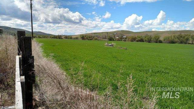 1040 Carr Road, Weiser, ID 83672 (MLS #98765478) :: Boise River Realty