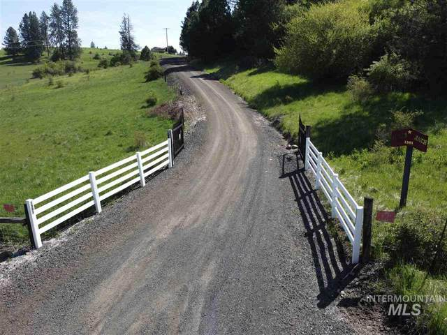 1391 Battle Ridge Rd, Kooskia, ID 83539 (MLS #98766012) :: Boise Home Pros