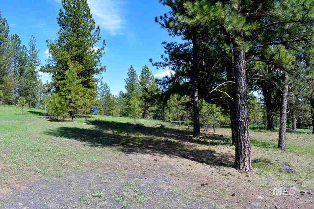 TBD Syringa Drive, New Meadows, ID 83654 (MLS #98766149) :: Epic Realty