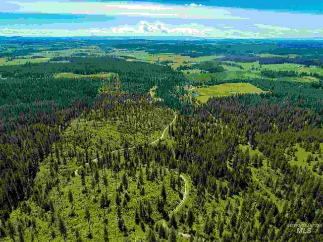 TBD Old Avon Rd., Deary, ID 83823 (MLS #98766452) :: Story Real Estate