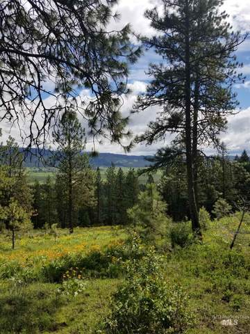 LOT 25 Skyline Dr., New Meadows, ID 83654 (MLS #98766546) :: Epic Realty