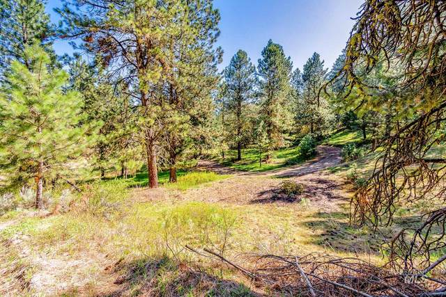 56, 66, 68 Sunset Loop  Crown Point Area, Cascade, ID 83611 (MLS #98766970) :: Juniper Realty Group