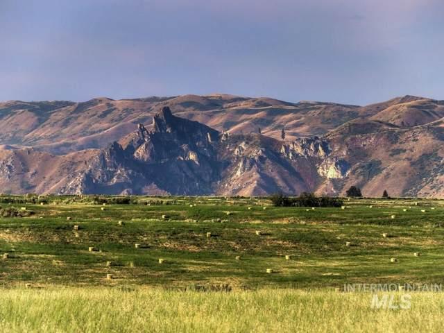 162 Prairie Rd 7 Of 8, Prairie, ID 83647 (MLS #98767114) :: Adam Alexander