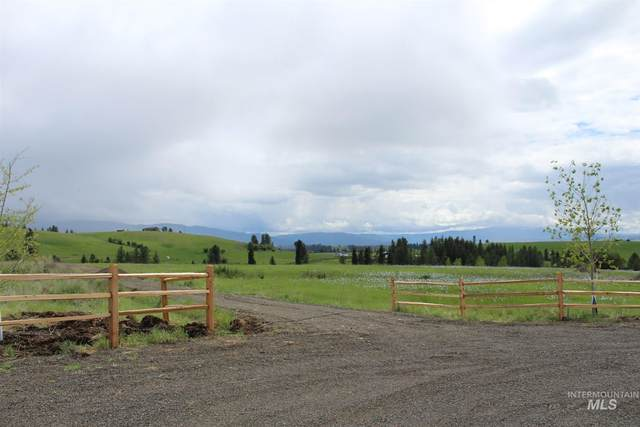 113 Sunset Lane, Kooskia, ID 83539 (MLS #98767739) :: Adam Alexander
