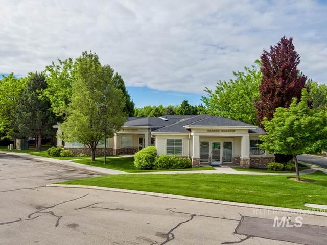 3676 N Harbor Lane, Boise, ID 83703 (MLS #98768340) :: Jon Gosche Real Estate, LLC