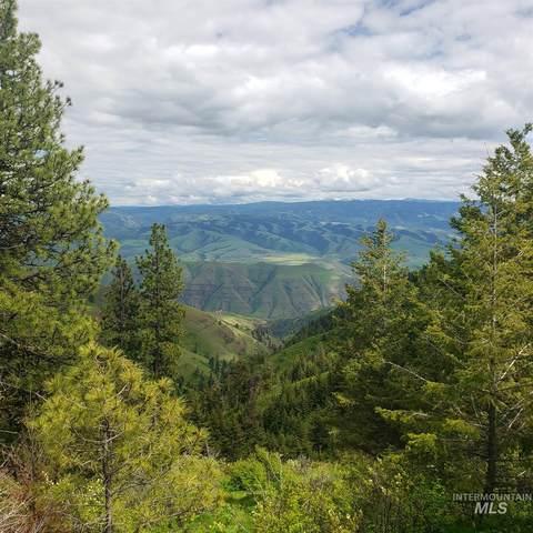 Lot 36 Pilgrim Ridge Road, White Bird, ID 83554 (MLS #98768631) :: Boise River Realty