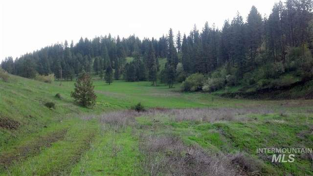000 Cornish Road, Kamiah, ID 83536 (MLS #98768837) :: Minegar Gamble Premier Real Estate Services